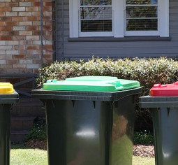 Your bins
